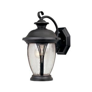 Westchester Bronze One-Light Outdoor Wall Lantern