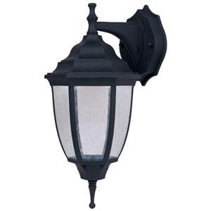 Lexington Black LED Wall Lantern