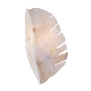 Banana Leaf One-Light Sconce with Sustainable Kabebe Shell Shade
