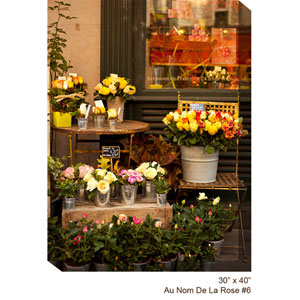 Flower Shop #6 V: 30 x 40 All Weather Outdoor Photograph Canvas Giclee