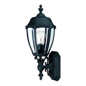 Roseville Black Large One-Light Outdoor Wall Light