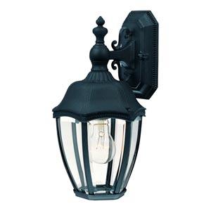 Roseville Black Three-Light Outdoor Wall Light