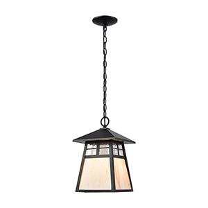Cottage Matte Black One-Light Outdoor Pendant