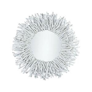 Birch Lane White Wall Mirror
