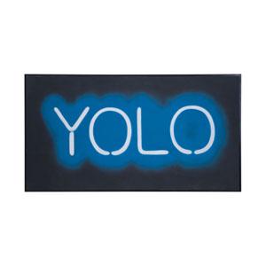 Yolo Wall Art