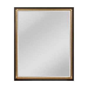 Whitfield Black and Silver 25 x 31-Inch Rectangle Mirror
