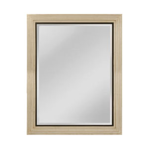 Sheldon Shining Silver and Gold Mist 38 x 48-Inch Rectangle Mirror