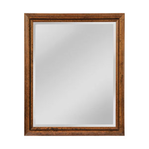 Ogden Light Bronze 27 x 33-Inch Rectangle Mirror