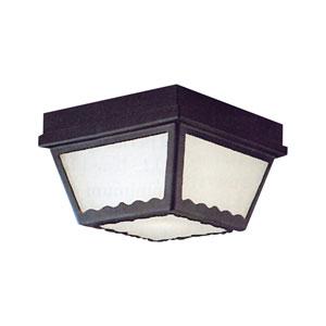 Essentials Black Two-Light Outdoor Flush Mount