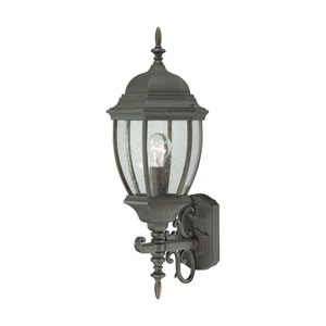 Covington Painted Bronze 24-Inch Outdoor Wall Sconce