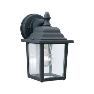 Hawthorne Black 10-Inch Outdoor Wall Sconce with Clear Glass