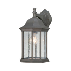 Hawthorne Painted Bronze 14-Inch Outdoor Wall Sconce