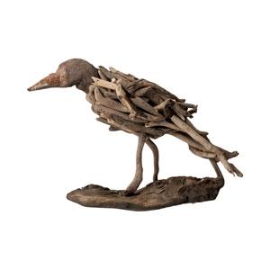 Driftwood Brown Bird