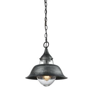 Stratham Silvered Graphite 12-Inch One-Light Pendant