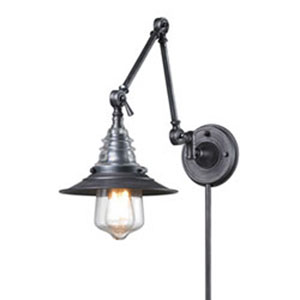 Insulator Glass Weathered Zinc One Light Swingarm Lamp