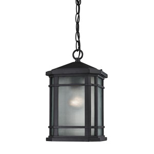 Lowell Matte Black One-Light Outdoor Pendant
