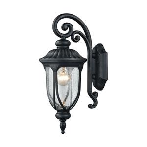Derry Hill Matte Black 7-Inch One-Light Outdoor Wall Lantern