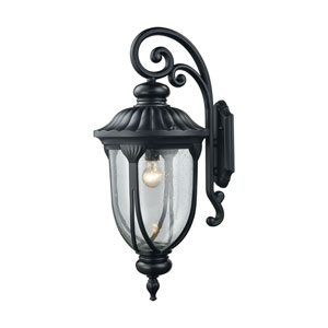 Derry Hill Matte Black 12-Inch One-Light Outdoor Wall Lantern