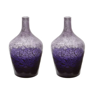 Ombre Plum Bottles - Set of Two