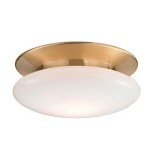 Irvington Satin Brass Fifteen-Inch LED Flushmount