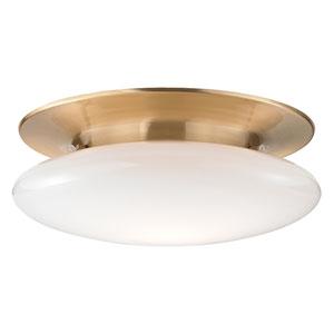 Irvington Satin Brass Eighteen-Inch LED Flushmount