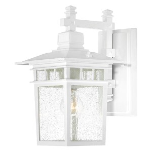 Cove Neck White One-Light 14-Inch High Outdoor Wall Lantern with Clear Seeded Glass