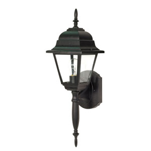 Briton Textured Black One-Light Outdoor Wall Mount with Clear Glass