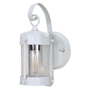 White One-Light Outdoor Wall Mount with Clear Seed Glass