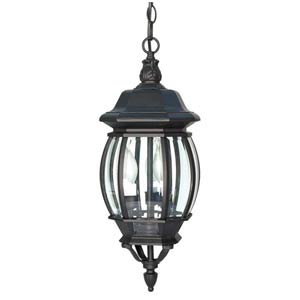 Central Park Textured Black Outdoor Hanging Pendant