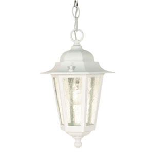 Cornerstone White One-Light Outdoor Pendant with Clear Seed Glass