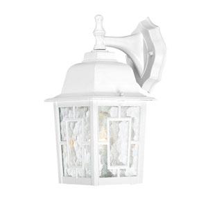Banyon White Finish One Light Outdoor Wall Sconce with Clear Water Glass