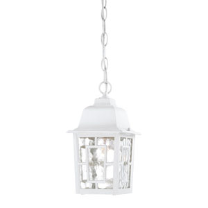 Banyon White Finish One Light Outdoor Hanging Pendant with Clear Water Glass