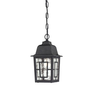Banyon Textured Black Finish One Light Outdoor Hanging Pendant with Clear Water Glass