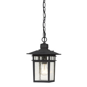 Cove Neck Textured Black Finish One Light Outdoor Hanging Pendant with Clear Seeded Glass