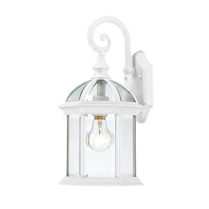 Boxwood White Finish One Light Outdoor Wall Sconce with Clear Beveled Glass