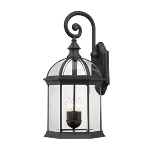 Boxwood Textured Black Finish Three Light Outdoor Wall Sconce with Clear Beveled Glass