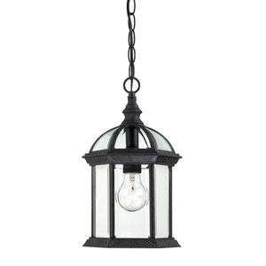 Boxwood Textured Black Finish One Light Outdoor Hanging Pendant with Clear Beveled Glass