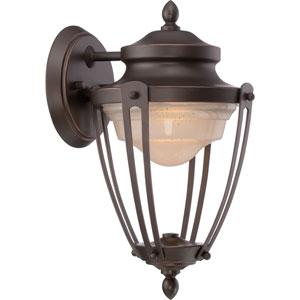 Cole Mahogany Bronze One-Light LED Outdoor Wall Lantern