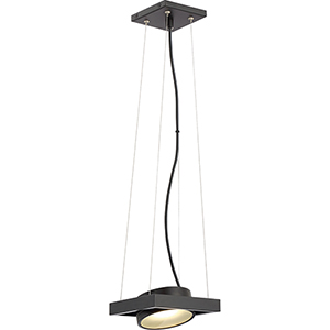 Hawk Textured Black LED Pendant