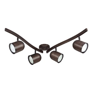 Russet Bronze Four-Light R30 Bullet Fluorescent Swivel Track Kit