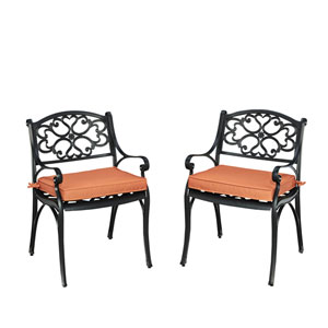 Biscayne Black Pair of Arm Chairs with Cushions