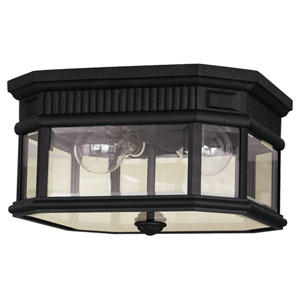 Cotswold Lane Black Outdoor Two-Light Ceiling Fixture