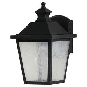 Woodside Hills Black Outdoor Wall Lantern Light