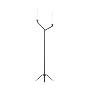 Hopton Midnight Black Two-Light Title 24 Floor Lamp