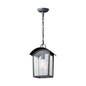 Hodges Ash Black One-Light Outdoor Pendant Lantern
