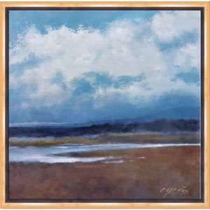 Passing Clouds by Steve Capiz: 21 x 21 Framed Giclee Canvas