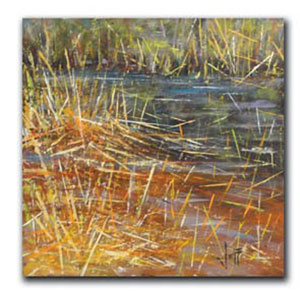Reedy Pool by Jeff Boutin: 10 x 10 Giclee Canvas