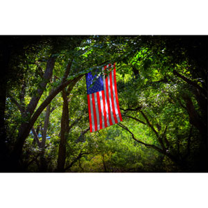 American Flag On Texas Road by Kelly Wade, 16 x 24 In. Canvas Art