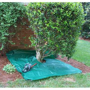 Dark Green Pruning Drop Cloth