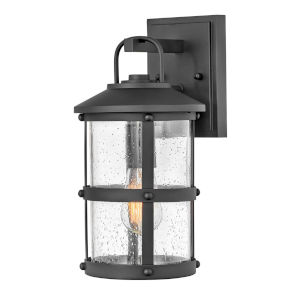 Lakehouse Black 15-Inch One-Light Outdoor Wall Mount